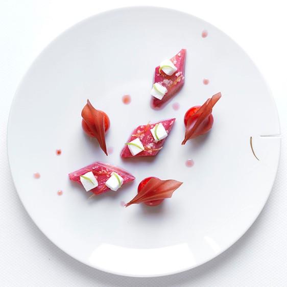 alleno-rhubarbe-rotie-homepage-562x562